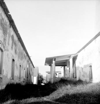 Image 3 (7)