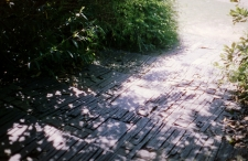 Image 1 (3)